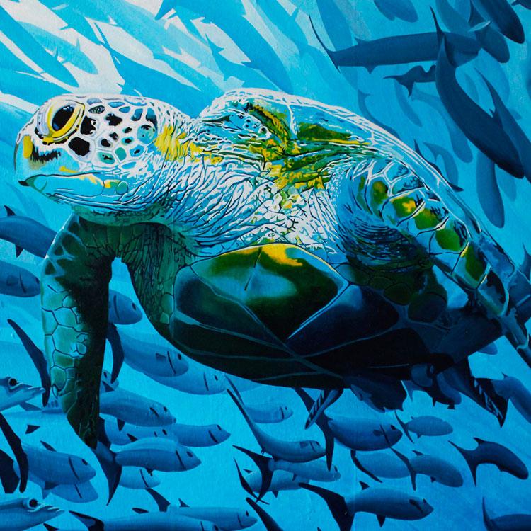 TripleH Painting Turtle